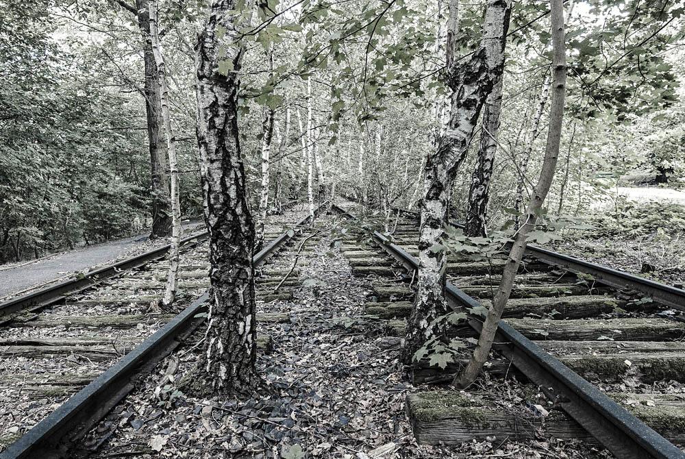 Von der Schiene auf die Straße