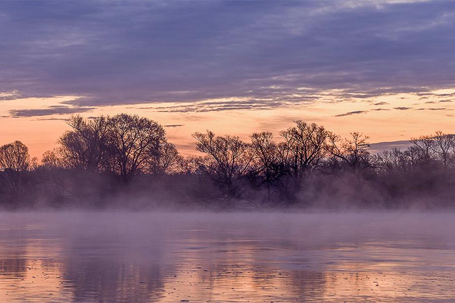 Nebel überm Fluss